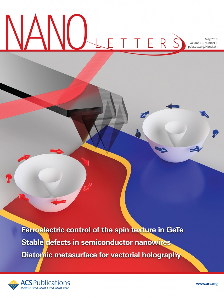 Nanoletters cover