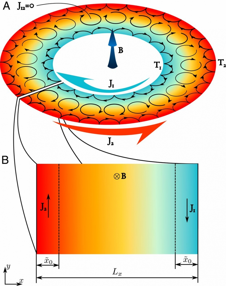 (A) The schematic showing the edge currents flowing in a Corbino disk subjected to an external magnetic field normal to its plane and to a radial temperature gradient. (B) The schematic showing the edge currents flowing in a conducting strip subjected to an external magnetic field normal to its plane.