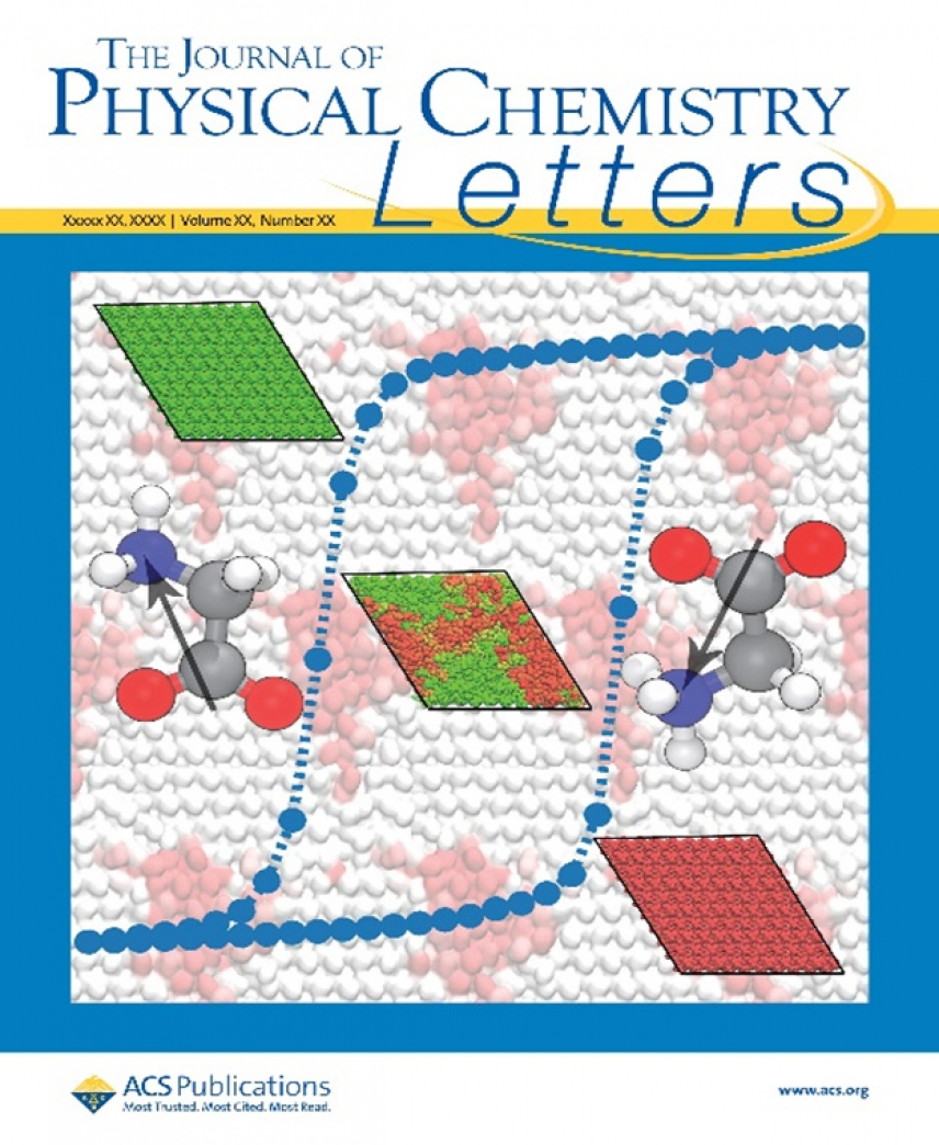 The Journal of Physical Chemistry Letters cover